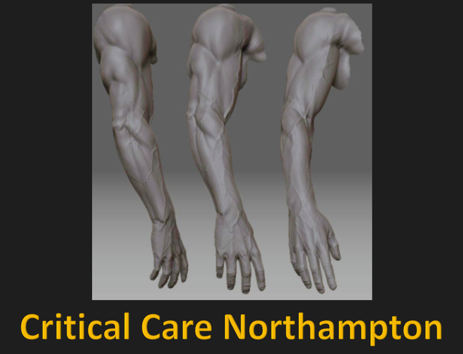 Upper Limb – Critical Care Northampton