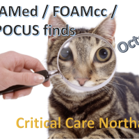 Best of #FOAMed / #FOAMcc / #POCUS - Oct (1)