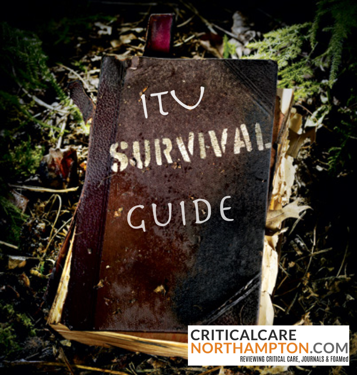 General ITU Survival Guide
